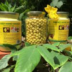 Uống tinh bột nghệ mật ong có tác dụng phụ gì không?