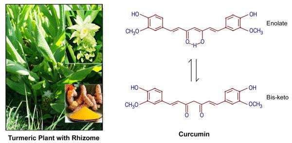 Curcumin chất chống ung thư.