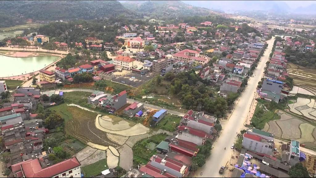 Mua bán tinh bột nghệ tại Lào Cai giá rẻ