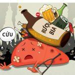 Uống tinh bột nghệ hàng ngày giải độc gan, thận do bia rượu